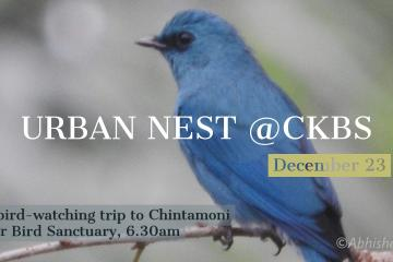 Urban Nest at CKBS