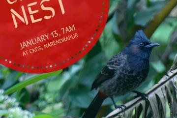 Upcoming event - Urban Nest at CKBS