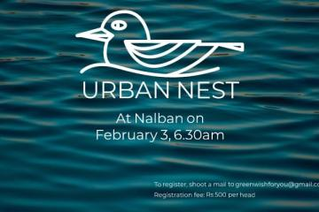Urban Nest at Nalban February 3