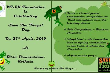 Save The Frogs Day Celebration